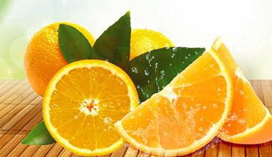 赣南脐橙推广单页